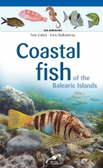 Coastal fish of the Balearic Islands